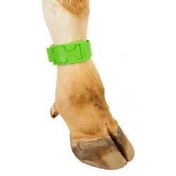 Bracelet de Marquage Vert PVC