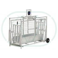 Cage De Pesée Mouton Digitale
