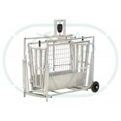 Cage De Pesée Agneau Digitale