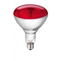 IR Warmtelamp Rood 150 W