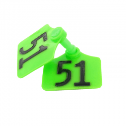 Boucles PrimaFlex Vert