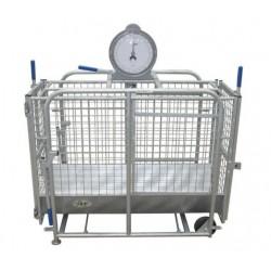 Cage De Pesée Mouton IAE