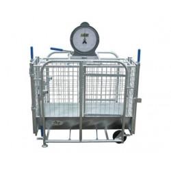 Cage De Pesée Agneau IAE
