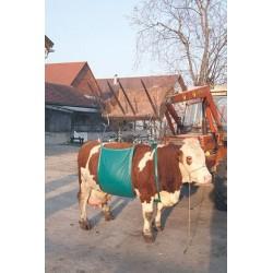 Monte-Vache Daisy Lifter