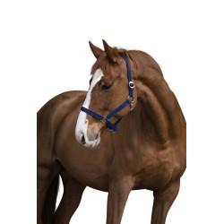 Licol Classic 00 (Foal)